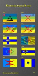 Drapeau kabyle : liste des 90 spécimens dans Actualité 6669384-10193787-151x300